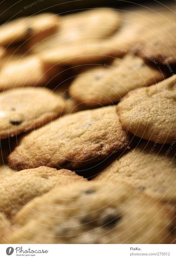 Kekse... Kekse so weit das Auge reicht! Lebensmittel Dessert Süßwaren Ernährung lecker süß gelb gold Völlerei gefräßig Hemmungslosigkeit cookie rund ungesund