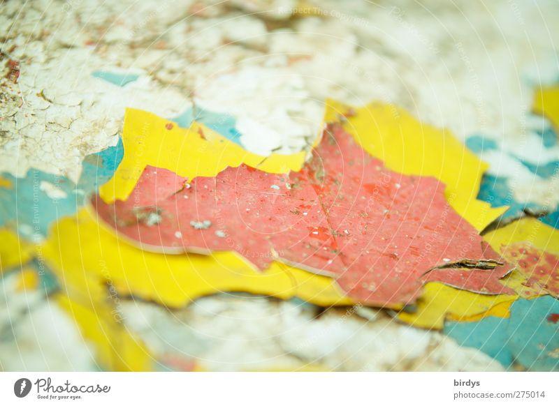 Farbsandwich blau rot Farbe gelb Leben Wand Mauer authentisch leuchten kaputt Wandel & Veränderung Verfall Nostalgie abblättern Originalität Mensch