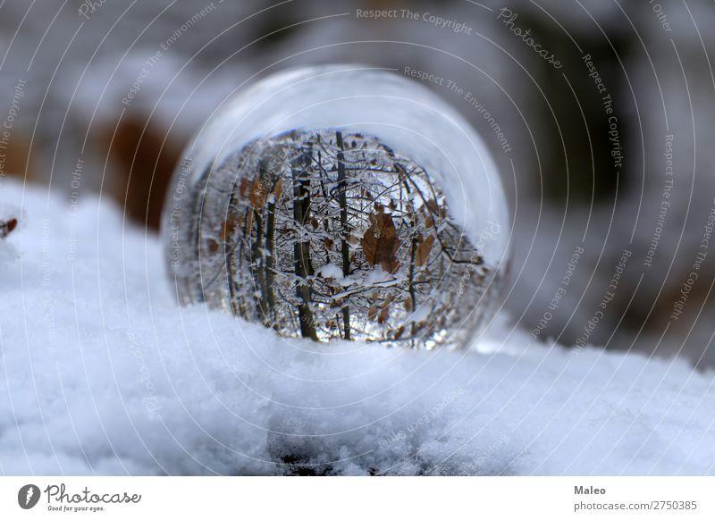 Glaskugel Herbst Hintergrundbild Kugel schön hell Feste & Feiern Weihnachten & Advent Farbe Kristallstrukturen Kristalle Tag Dekoration & Verzierung Umwelt Wald