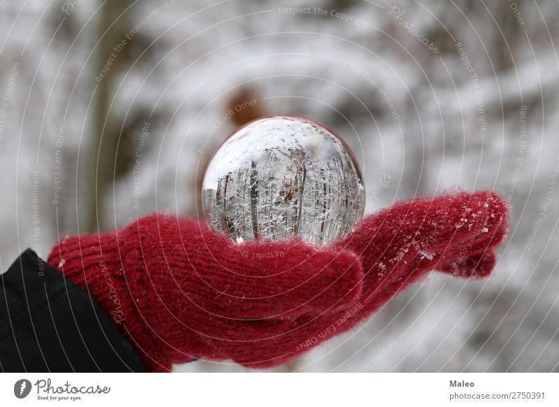 Glaskugel Herbst Hintergrundbild Kugel schön hell Feste & Feiern Weihnachten & Advent Farbe konzept Kristallstrukturen Tag Dekoration & Verzierung Umwelt Wald