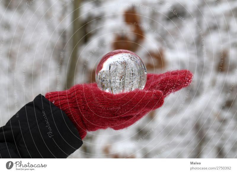 Glaskugel Herbst Hintergrundbild Kugel schön hell Feste & Feiern Weihnachten & Advent Farbe konzept Kristalle Tag Dekoration & Verzierung Umwelt Wald Hand