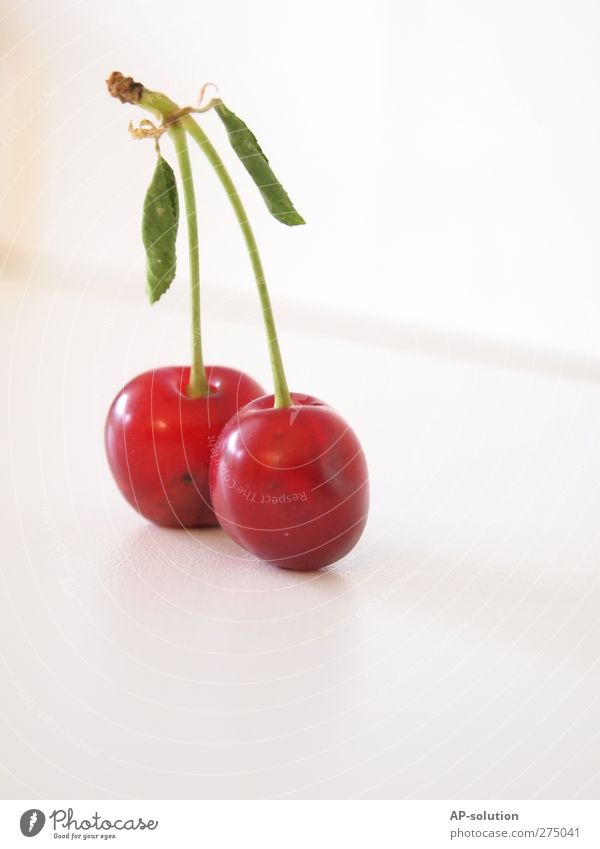 Kirschen *2 Lebensmittel Frucht Dessert Ernährung Bioprodukte Gesunde Ernährung Natur Gesundheit saftig sauer süß grün rot Farbfoto Innenaufnahme Studioaufnahme