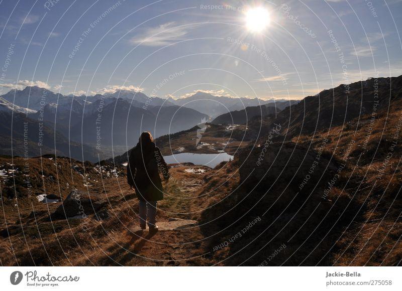 Der Sonne entgegen Himmel Natur blau Pflanze Tier Erholung Landschaft kalt Berge u. Gebirge Herbst Bewegung Horizont braun gehen Zufriedenheit