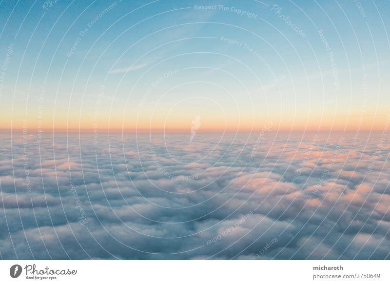 Über den Wolken I Abenteuer Freiheit Umwelt Himmel Sonnenaufgang Sonnenuntergang Klima Klimawandel Wetter Schönes Wetter Nebel Luftverkehr Cockpit