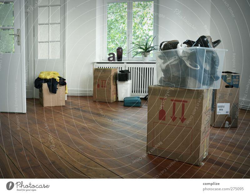 der Umzug schön Pflanze Innenarchitektur Raum Schuhe Wohnung Dekoration & Verzierung Häusliches Leben einzigartig Umzug (Wohnungswechsel) Wohnzimmer trendy