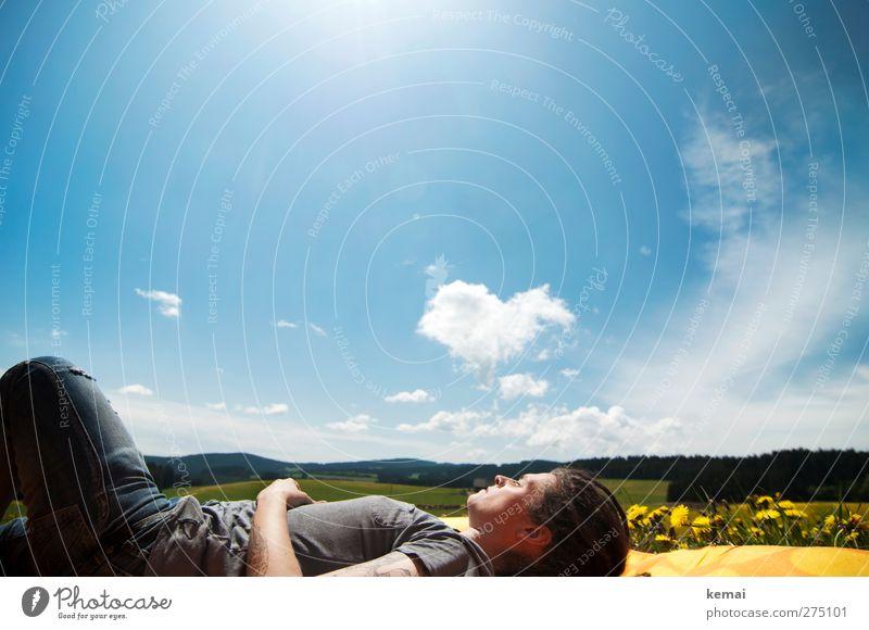 Frischluft-Träumerei Mensch Himmel Natur blau Sommer Pflanze Blume Wolken ruhig Erwachsene Wald Umwelt Landschaft Liebe gelb feminin