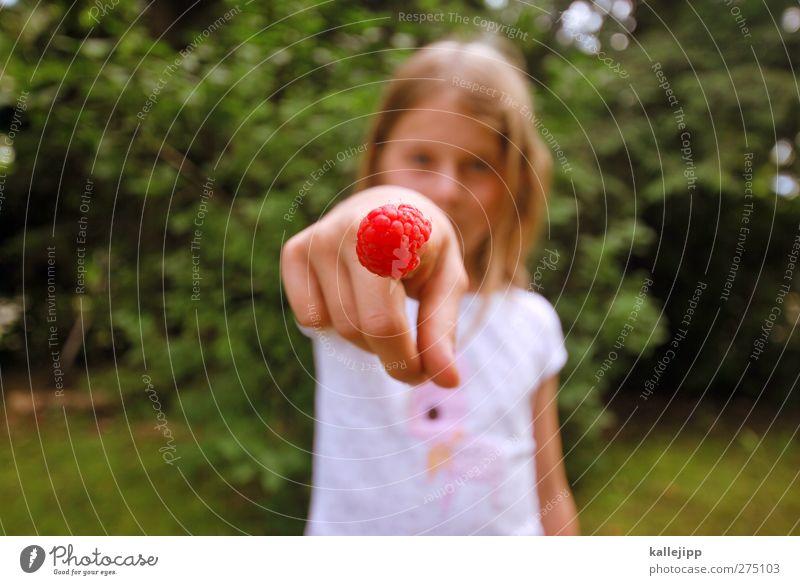 so schmeckt der sommer Mensch Kind Natur grün Sommer Pflanze rot Freude Mädchen Tier Landschaft Umwelt Garten Kindheit Frucht Freizeit & Hobby