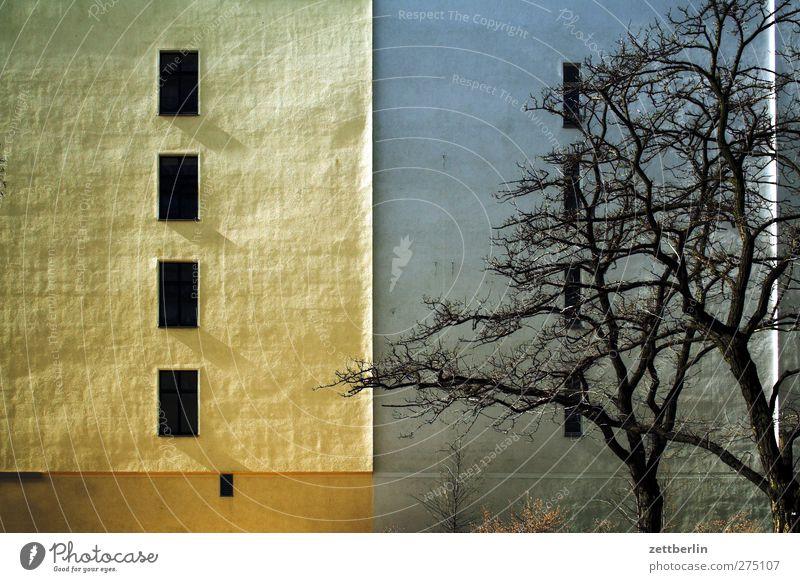 Schöneberg Stadt schön Baum Haus Umwelt Fenster Wand Herbst Architektur Mauer Gebäude Autofenster Wetter Klima Fassade gut