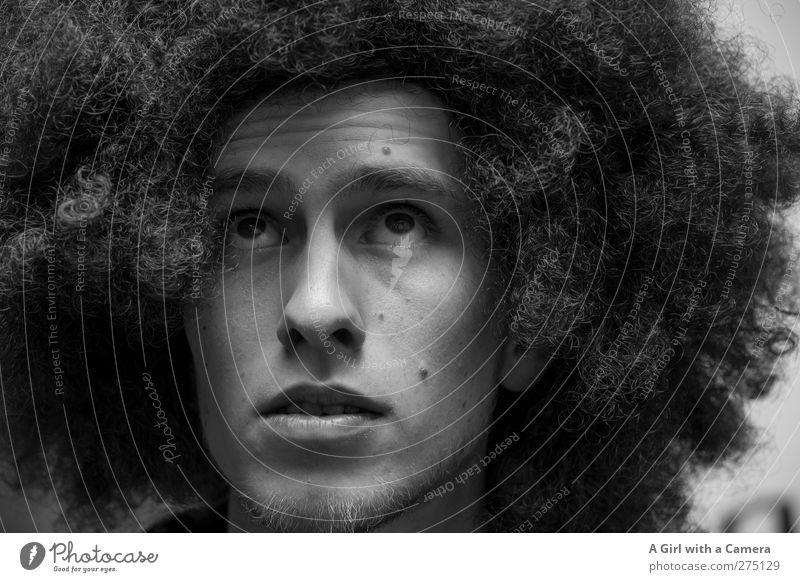 Hiddensee l Der allereinzigste überhaupt Mensch Jugendliche schön Erwachsene Leben Haare & Frisuren Junger Mann 18-30 Jahre maskulin viele Locken Perücke Afro-Look