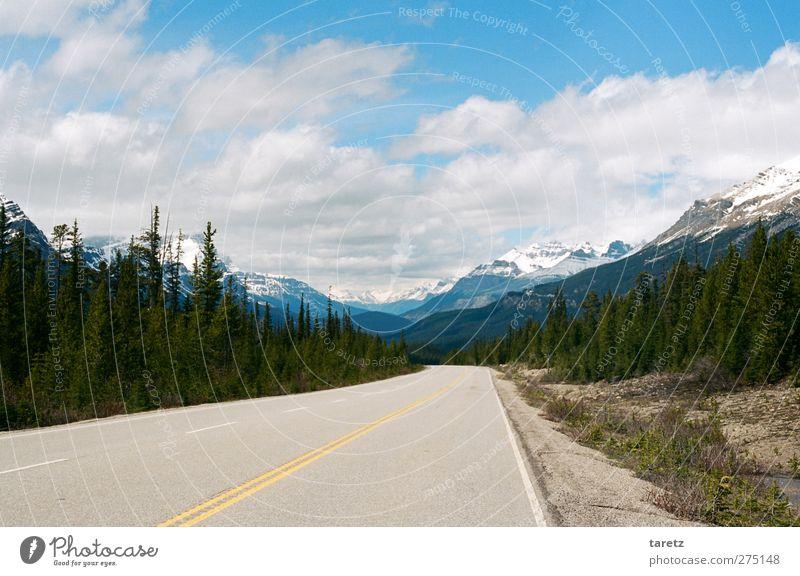 Unendliche weiten Umwelt Landschaft Wolken Sommer Schönes Wetter Zeder Berge u. Gebirge Rocky Mountains Bergkette Straße Glacier View Highway Abenteuer