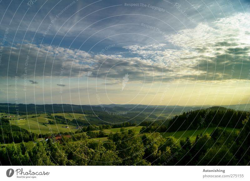 Mühlviertel II Umwelt Natur Landschaft Luft Himmel Wolken Horizont Sonnenaufgang Sonnenuntergang Sommer Schönes Wetter Baum Gras Sträucher Wiese Wald Hügel Haus
