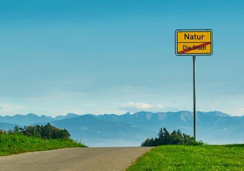 Raus aus der Stadt, rein in die Natur Ferien & Urlaub & Reisen Sommer Pflanze Landschaft Sonne Baum Erholung ruhig Freude Ferne Berge u. Gebirge Gesundheit
