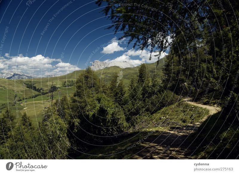 Auf dem Weg Himmel Natur Ferien & Urlaub & Reisen Baum Sommer Einsamkeit ruhig Erholung Umwelt Ferne Landschaft Berge u. Gebirge Wege & Pfade Freiheit träumen Horizont