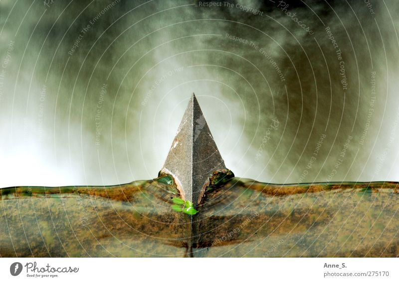 Spitze Pflanze Wasser Felsen Wasserfall Stein Pfeil Kraft Willensstärke standhaft Aggression Zufriedenheit Bewegung Energie Entschlossenheit Genauigkeit