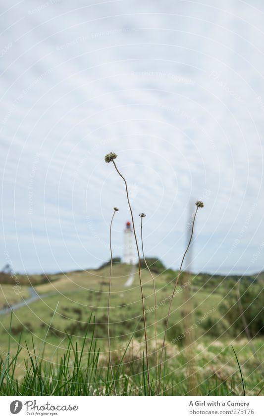 Hiddensee l hidden Natur Sommer Pflanze Wolken Landschaft oben Frühling Architektur Gebäude Horizont Wetter Insel Bauwerk Ostsee verstecken Leuchtturm