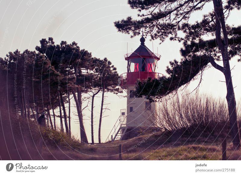 Hiddensee   feel it Natur rot Einsamkeit Umwelt Landschaft Küste Lampe Stimmung Romantik Aussicht genießen Bauwerk Ostsee Düne verstecken Abenddämmerung
