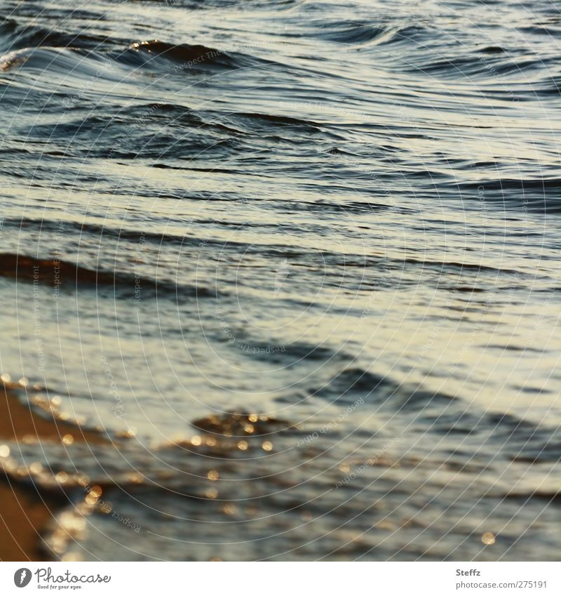 Lichtmomente an der Ostsee Meer maritim sanfte wellen Strand Wasser Wellen Küste Seeufer ruhig Meeresstimmung Abendstille hellblau Lichtstimmung Erholung Stille
