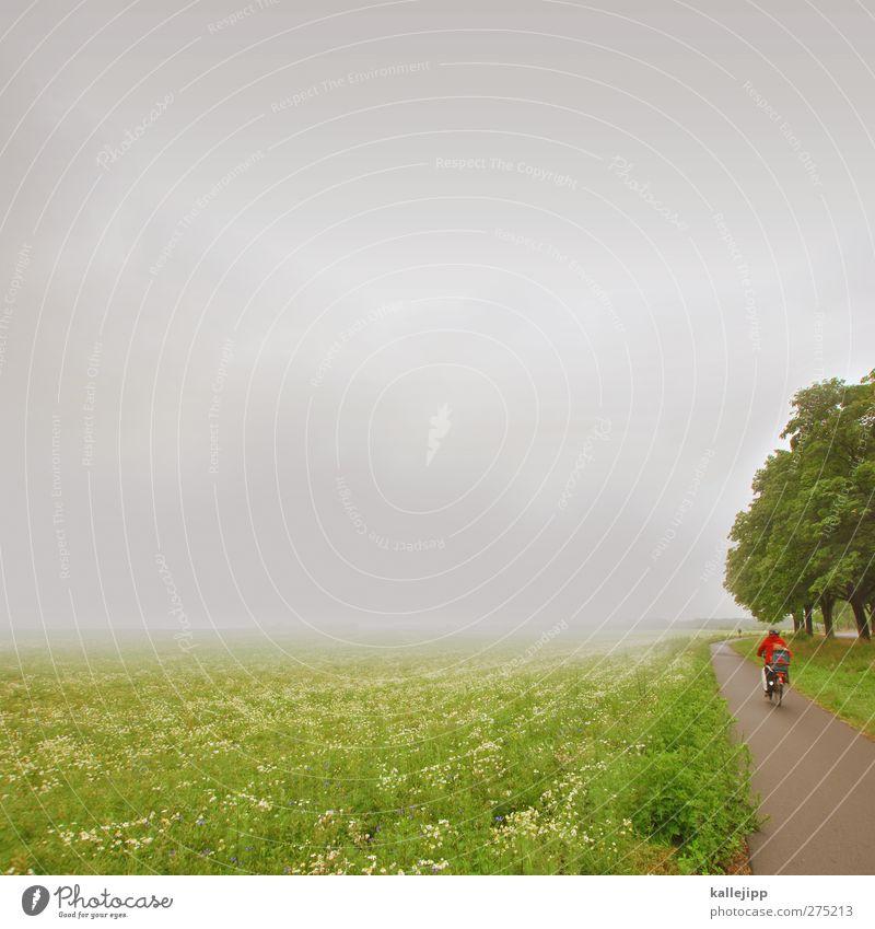 deutscher sommer Mensch Natur Ferien & Urlaub & Reisen Baum Sommer Pflanze Wolken Umwelt Ferne Landschaft Gras Freiheit Luft Regen Wetter Fahrrad