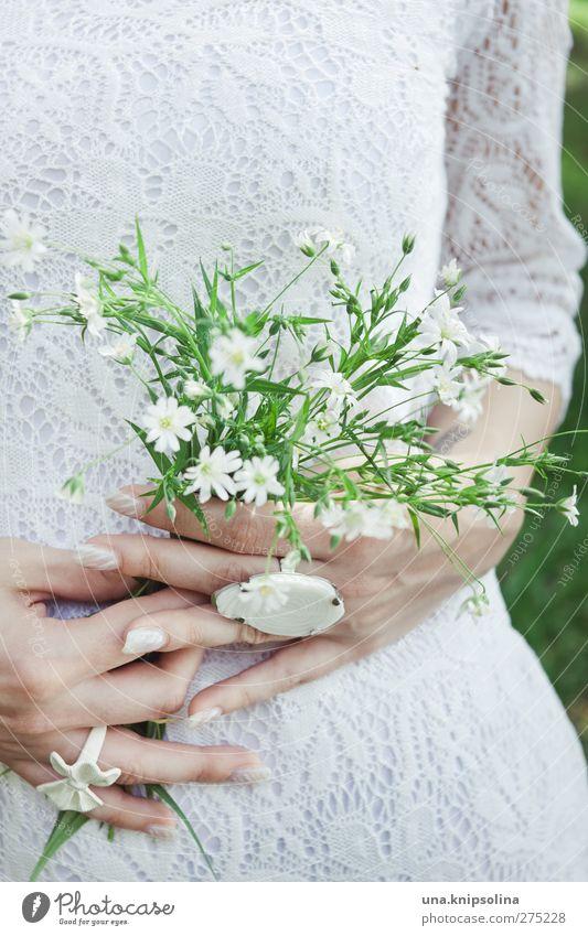 verdoyant et blanc.. feminin Junge Frau Jugendliche Erwachsene Hand 1 Mensch 18-30 Jahre Pflanze Blume Blüte Grünpflanze Spitze Schmuck Ring festhalten