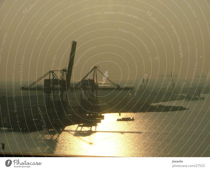 Hafen Meer Reflexion & Spiegelung Kran Industrie Sonne