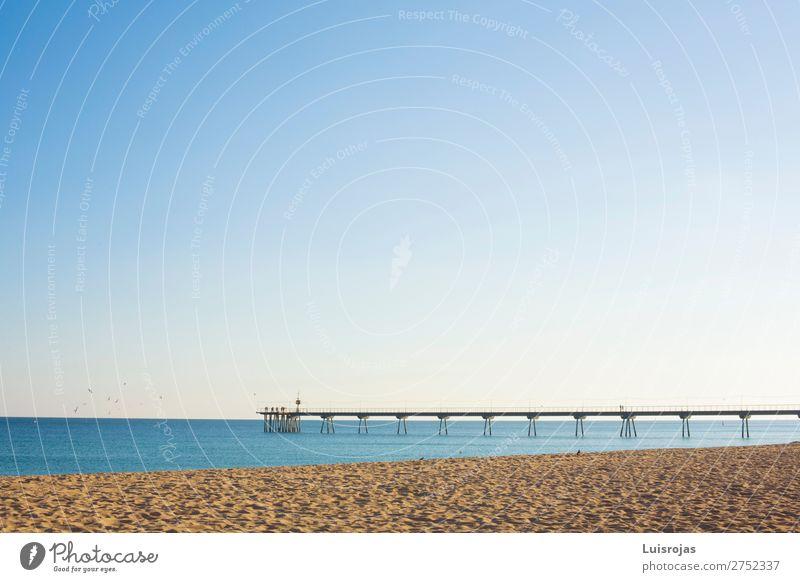 Maritime Fußgängerbrücke über das Meer an einem sonnigen Tag Freude ruhig Spielen Sport Natur Landschaft Sand Wasser Himmel Sonne Frühling Sommer Schönes Wetter