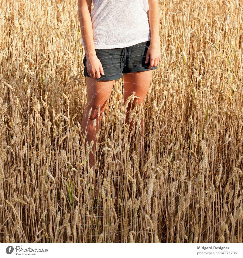 Sommer, Sonne, 18 Uhr Mensch feminin Frau Erwachsene 18-30 Jahre Jugendliche Umwelt Natur Erholung stehen Feld Getreide Weizen Weizenfeld Arme Beine Quadrat
