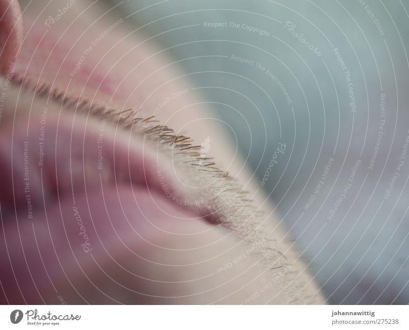 sonntagmorgen. IV maskulin Junger Mann Jugendliche Mund Lippen 1 Mensch 18-30 Jahre Erwachsene Dreitagebart liegen schlafen weich rot ruhig träumen beobachten