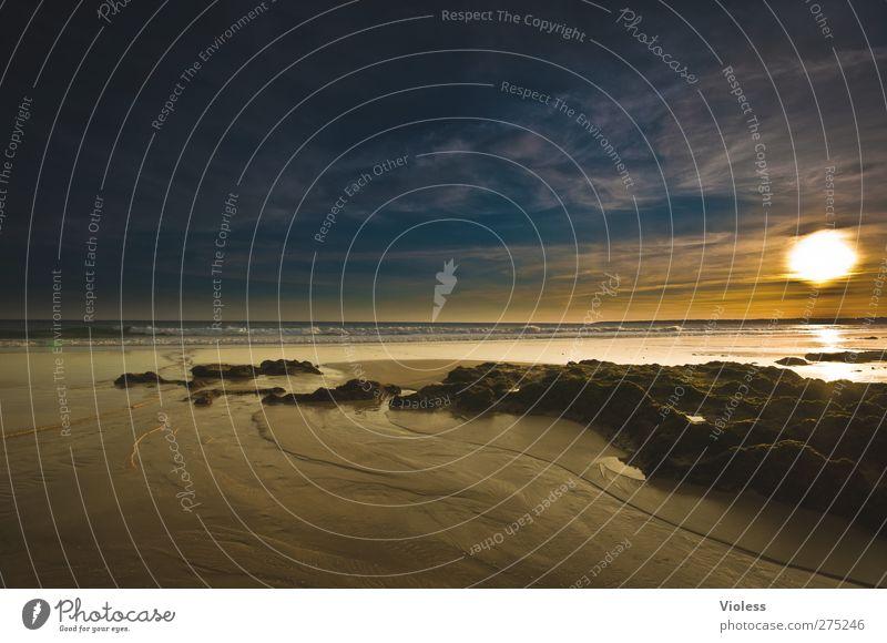 Sehnsucht Natur Landschaft Erde Sand Wasser Himmel Wolken Sonne Sonnenaufgang Sonnenuntergang Sonnenlicht Sommer Schönes Wetter Küste Strand Bucht Meer Erholung