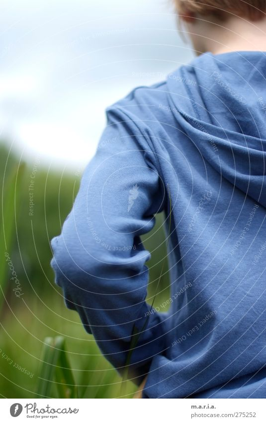 Blau Kind Junge Bruder 1 Mensch 8-13 Jahre Kindheit Gras träumen Traurigkeit authentisch blau Stimmung Farbfoto Außenaufnahme Tag