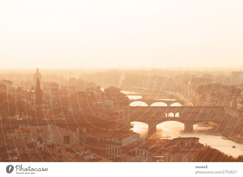Ponte Vecchio in Florenz Stadt Stadtzentrum Altstadt Skyline Haus Bauwerk Gebäude Architektur Sehenswürdigkeit Wahrzeichen Denkmal gelb gold Toskana Brücke