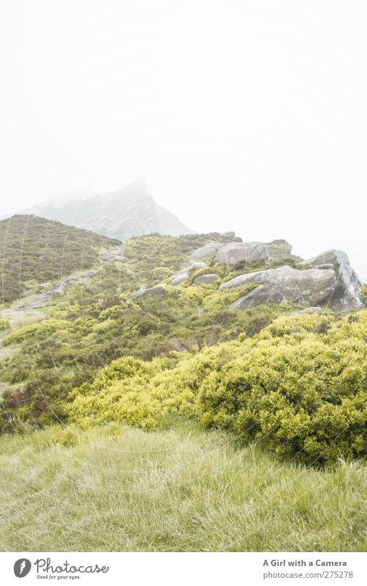 weitere Wetter aussichten Umwelt Natur Landschaft Pflanze Urelemente Frühling Sommer schlechtes Wetter Nebel Hügel Felsen Berge u. Gebirge Gipfel natürlich wild
