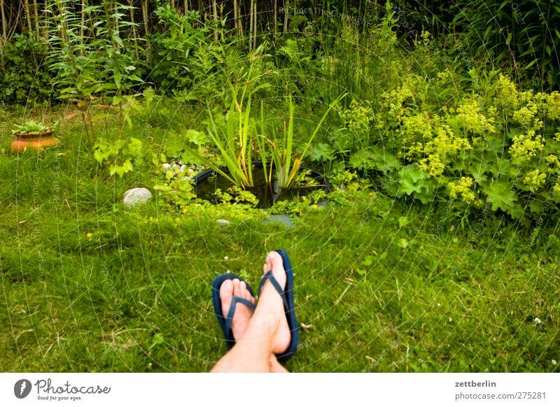Biotop Natur Mann Sommer Pflanze ruhig Erwachsene Erholung Umwelt Gras Garten Beine Fuß Zufriedenheit sitzen Freizeit & Hobby Wellness