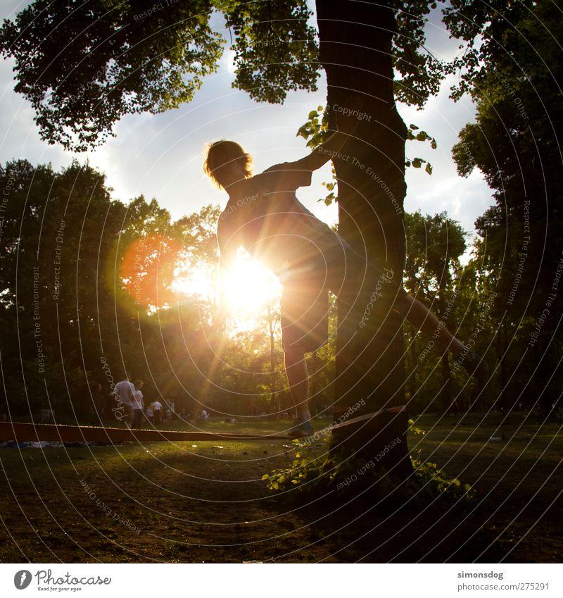 berlin slacking Freizeit & Hobby Sport Mensch Junger Mann Jugendliche Leben 1 Natur Sommer Sonne Baum Park Wiese leuchten ruhig Leichtigkeit Slackliner Funsport