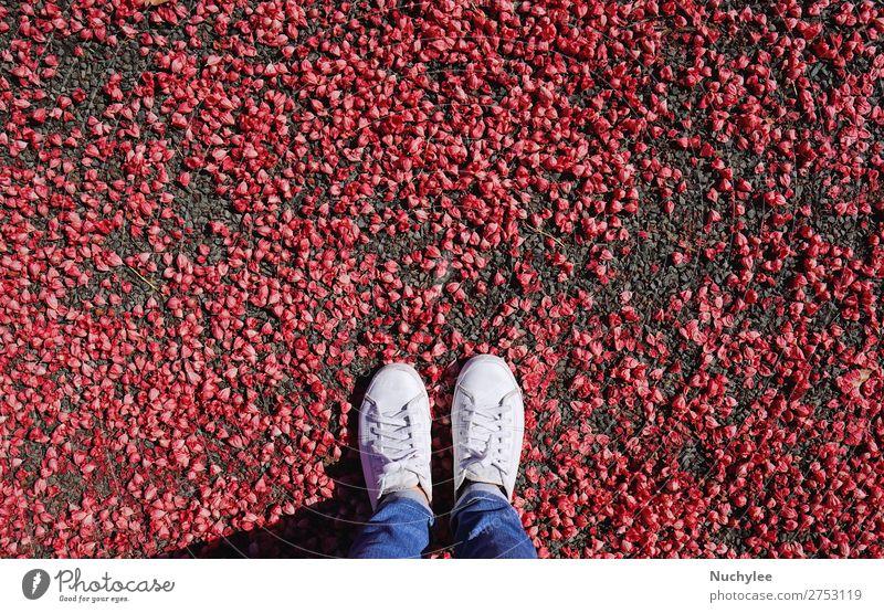 Selfie der Füße in modischen Turnschuhen auf roter Blume Lifestyle Stil Ferien & Urlaub & Reisen Abenteuer Freiheit Mensch Fuß Mode Bekleidung Jeanshose Schuhe