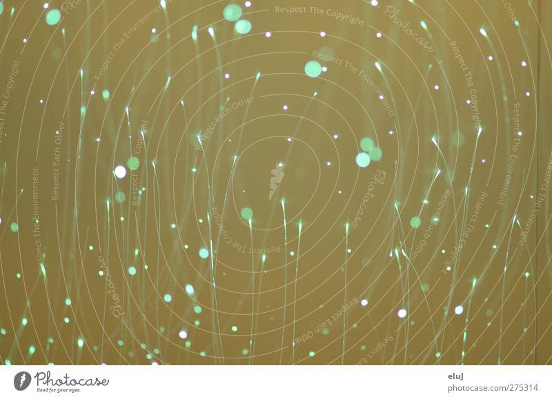 Leuchtstäbchen Netzwerk fliegen glänzend leuchten braun gelb grün türkis glitzern Lampe beige Beleuchtung Farbfoto Innenaufnahme Licht Lichterscheinung