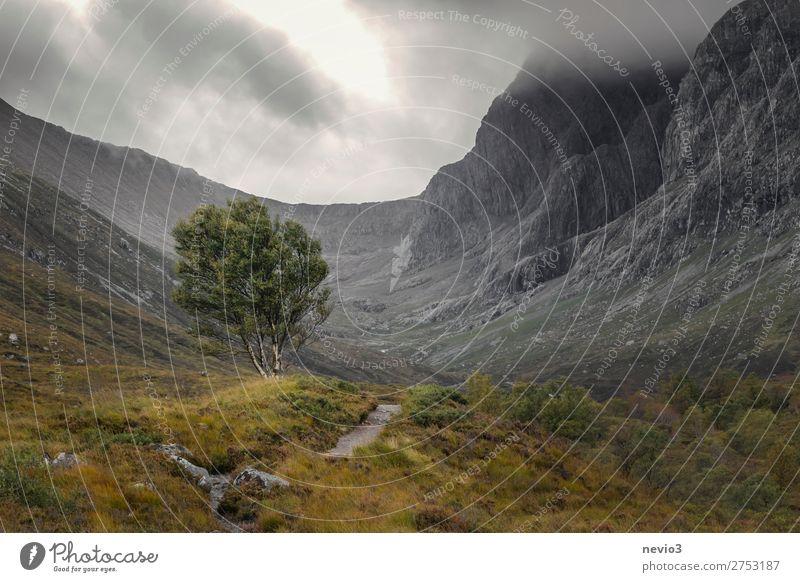 Auf dem Weg zum Ben Nevis in Schottland Erholung ruhig Ferien & Urlaub & Reisen Tourismus Ausflug Abenteuer Ferne Berge u. Gebirge wandern Natur Landschaft