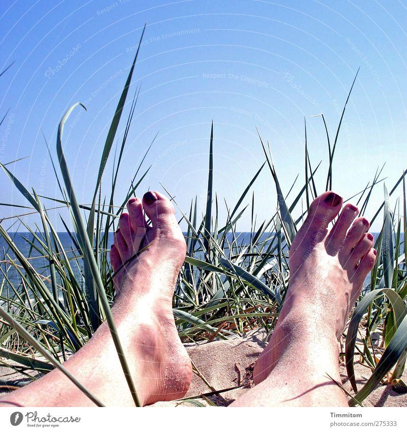 Sonnig, zeitweise heiter. Mensch Himmel blau Wasser Ferien & Urlaub & Reisen grün Sommer Pflanze feminin Gefühle Sand Fuß liegen Haut heiß Düne