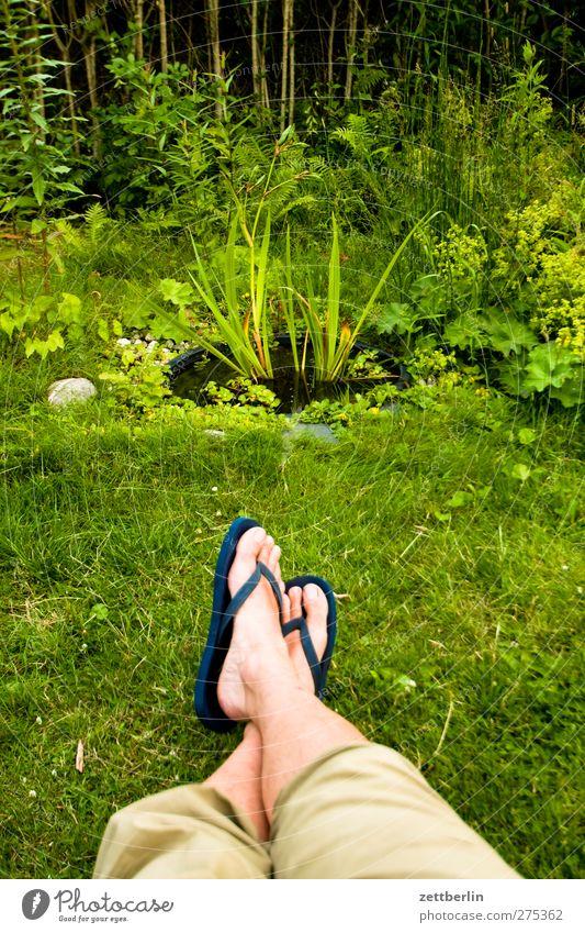 Meerblick Natur Mann Sommer Blume Blatt ruhig Erwachsene Erholung Umwelt Leben Gefühle Garten Beine Fuß Wetter Zufriedenheit