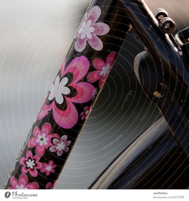 beautiful bicycle Freizeit & Hobby Fahrradfahren Etikett Blumenmuster Metall Stahl Rost Kunststoff trendy schön einzigartig positiv rosa schwarz Freude
