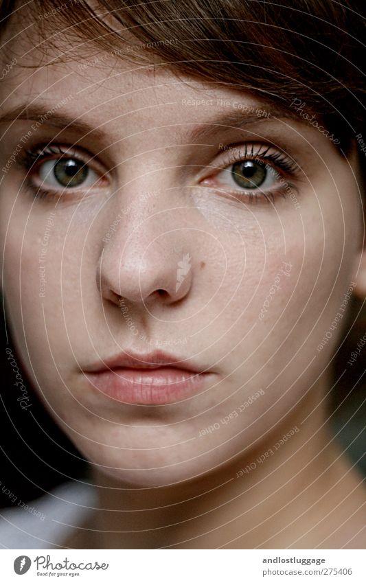 lion hearted girl. schön Gesicht Augenbrauenstift Mensch feminin Junge Frau Jugendliche 1 18-30 Jahre Erwachsene brünett Liebe Blick ästhetisch dunkel Wut