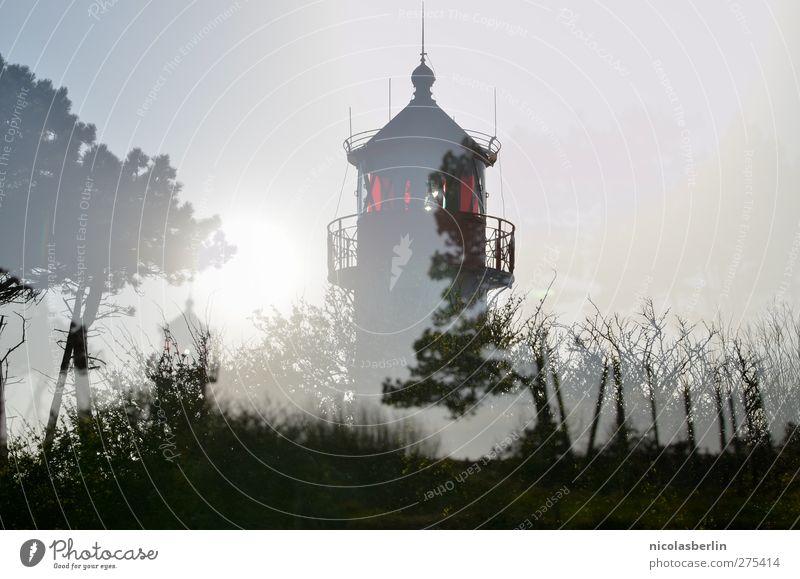 Hiddensee | home is where the heart is Ferien & Urlaub & Reisen Sommer Baum ruhig dunkel Gras Freiheit Küste Gebäude träumen außergewöhnlich wild Insel Ausflug leuchten Abenteuer
