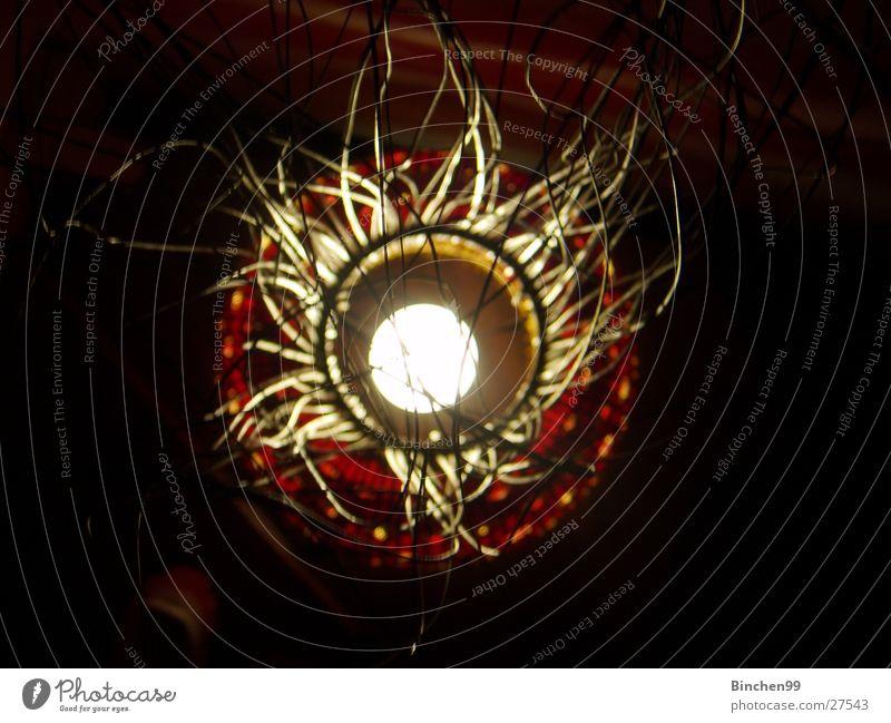 von oben herab Lampe Glühbirne Safari