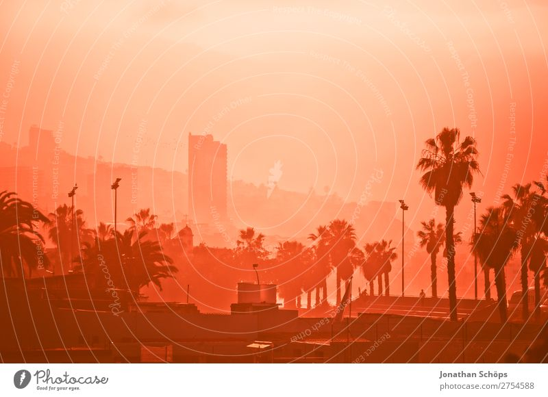 Stadtansicht im Nebel in Puerto de la Cruz, Teneriffa Hochhaus rosa 2019 Color of the Year 2019 Farbe des Jahres Farbtrends Korallen Living Coral Panorama