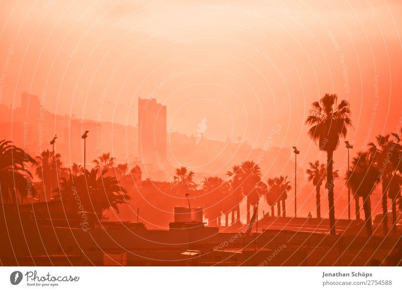 Stadtansicht im Nebel in Puerto de la Cruz, Teneriffa rosa Hochhaus Palme Korallen Smog Farbkarte