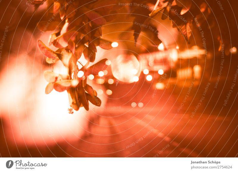 abstrakte Mehrfachbelichtung mit Lichtern Stadt Blatt Straße Hintergrundbild rosa Verkehr Stadtzentrum Doppelbelichtung Nachtaufnahme Raser