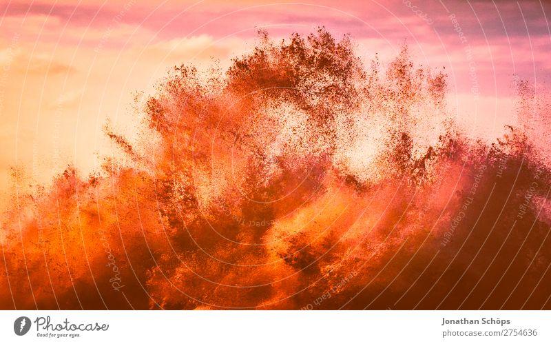 farbenfrohe Wellen rosa Teneriffa Korallen Farbkarte