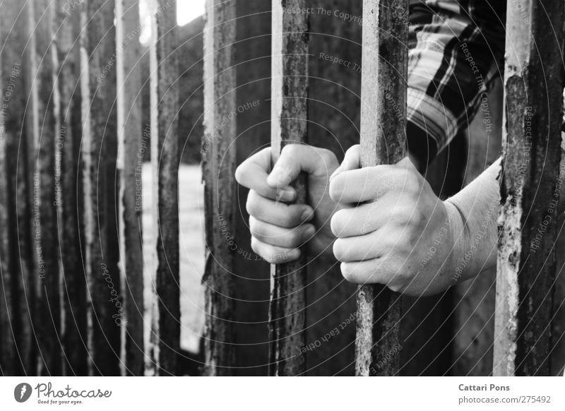 never changing seasons maskulin Junger Mann Jugendliche Erwachsene Leben Hand 1 Mensch Tor Hemd festhalten dunkel Laster Gitter gefangen Justizvollzugsanstalt