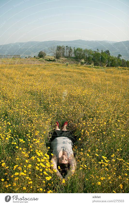 Natur grün Baum Blume Freude Blatt Erholung gelb Frühling Freiheit Junge Frau Gesundheit liegen Feld Wind nachdenklich