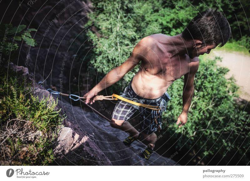 don't look down Mensch Natur Mann Jugendliche Baum Sommer Pflanze Erwachsene Wald Landschaft Leben Junger Mann Felsen 18-30 Jahre Freizeit & Hobby Abenteuer