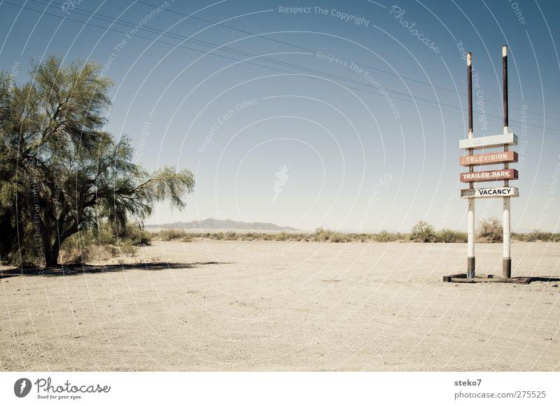 vacancy Sand Wolkenloser Himmel Schönes Wetter Wärme Dürre Baum Wüste trist trocken blau rot Schilder & Markierungen Werbung Autobahn Unbewohnt Gedeckte Farben